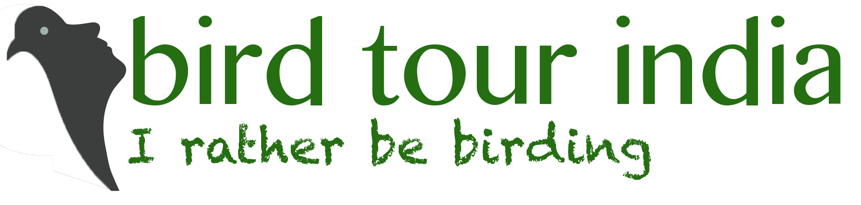 birdwatching tours holidays in india